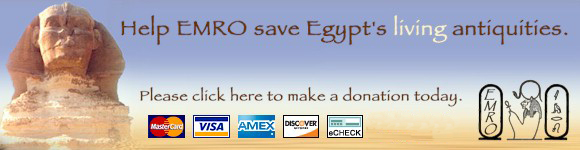 Help Save Our Living Antiquities